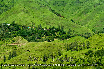 Lush Green mountains of Mansehra